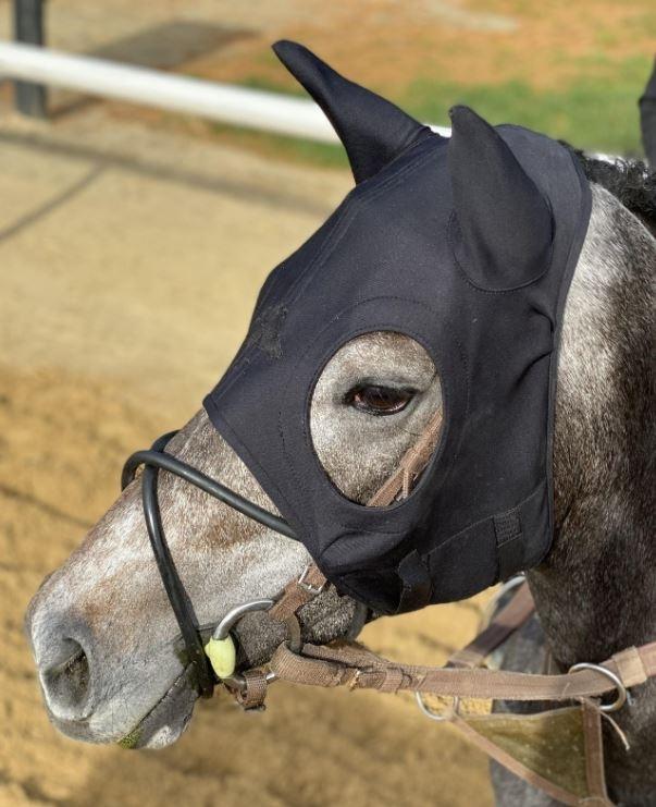 Fenwick Liquid Titanium Calming Masker with Ears