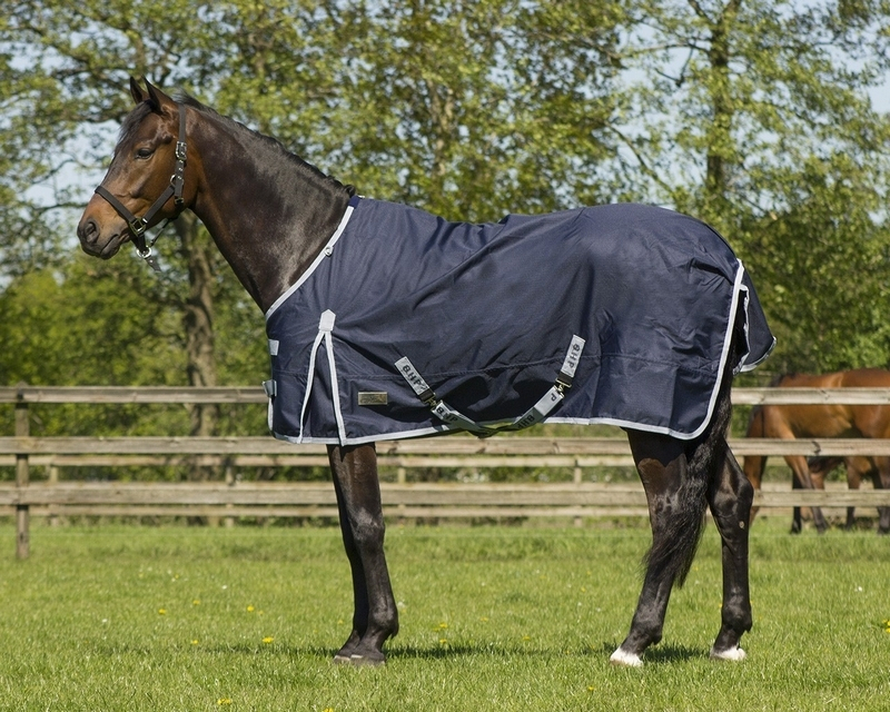 QHP Turnout rug 600D 100gr | Horse and