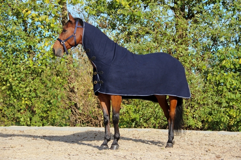 DKR Sports Wool Rug with neck