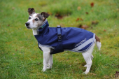 Bucas Recuptex Therapy Dog Rug 300grs