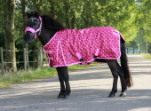DKR Sports Mini Winter rug 200grs specially for pony's