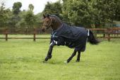 Horseware Amigo Bravo 12 Lite Rain Rug 0grs Disc Front Closure
