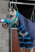 DKR Sports Mini Fleece Rug with neck for pony's