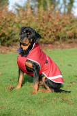 Bucas Freedom Dog Rug 300gram
