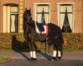 QHP Saddle pad Q Friesian
