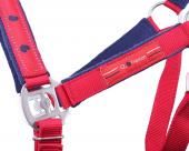QHP Head collar set Q Friesian