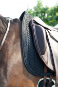 Kentucky Saddlepad Glitter Stone Dressage
