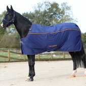 New Bucas Recuptex Therapy Rug