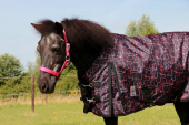 DKR Sports Mini Winter rug 100grs specially for pony's