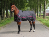 DKR Sports Rain rug turnout Luxe 200grs