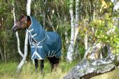 Horseware Amigo AmECO Bravo 12 Plus Turnout 0grs Rain Rug